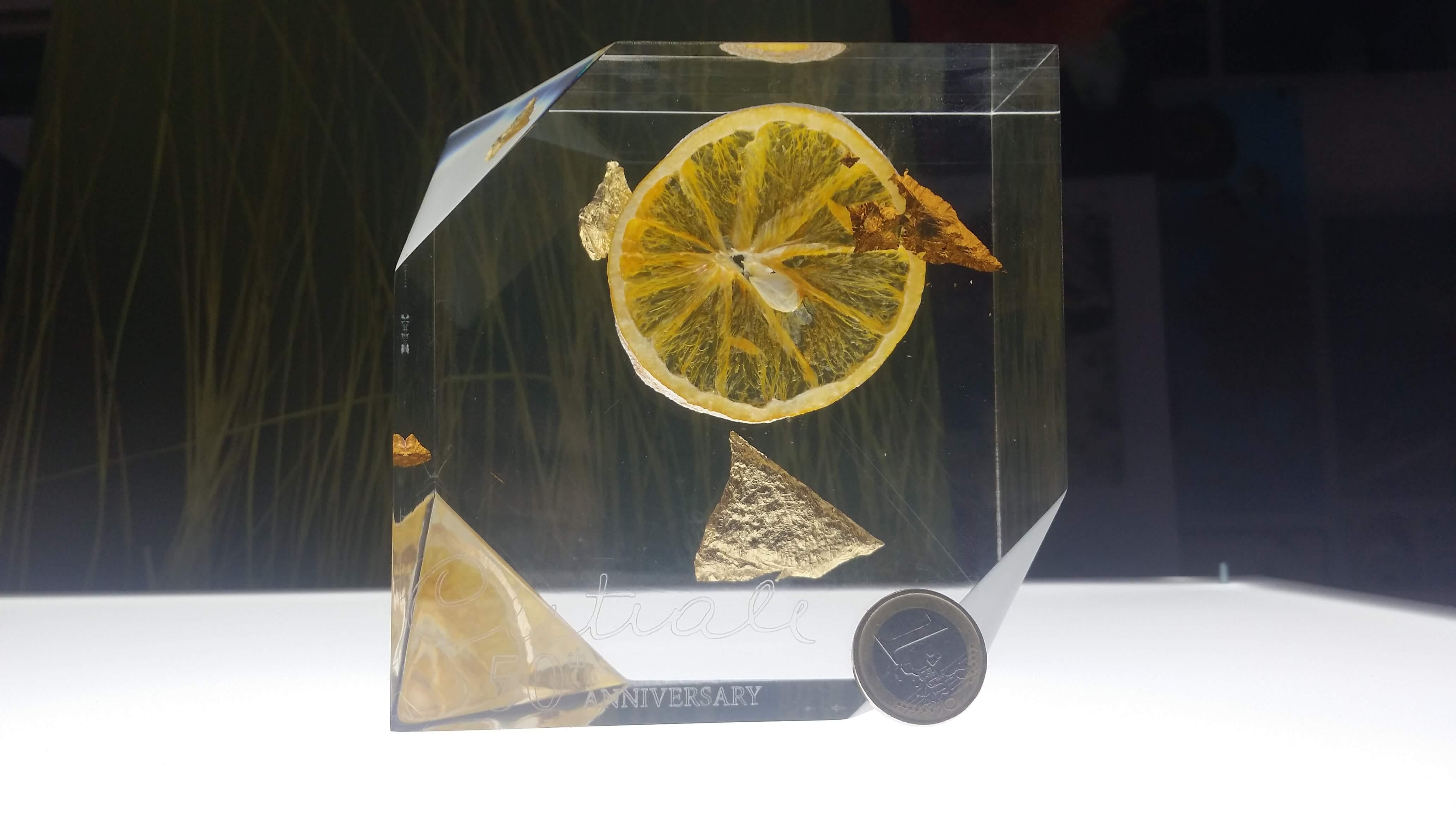 Arancia Inglobata Plexiglass